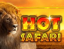 Hot Safari 75000